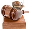 Lėtas teisingumas | Slow justice