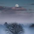 Naktie šventa